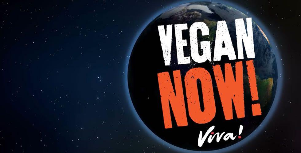 Viva Vegan Burgers Salisbury